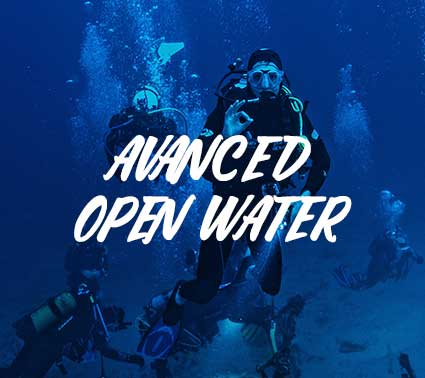 CURSO BUCEO ADVANCE